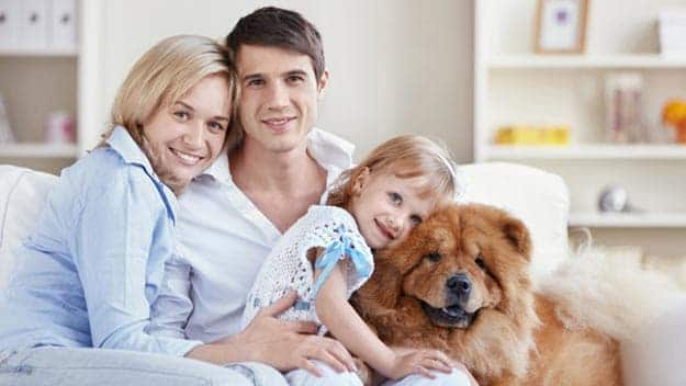 Wills & Trusts dog-young-family Direct Wills Hounslow
